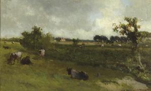 Grazende koeien in een polderlandschap