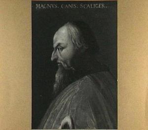 Portret van een man uit het geslacht Scaliger