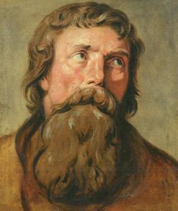 Kop van een man met een bruine baard