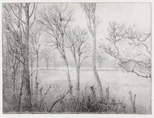 Winterlandschap in Rhijnauwen