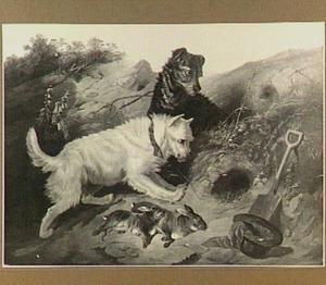 Twee jachthonden bij een konijnenhol