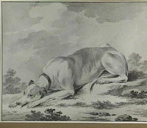 Liggende hond in een landschap