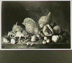 Stilleven met schelpen, insekten en vruchten op een gedekte tafel