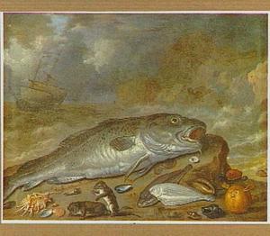 Vis op het strand