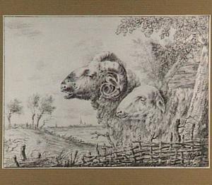 Kop van een ram en een schaap, op de achtergrond een landschap