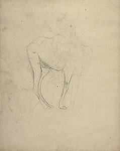 Schetsboekblad met een schets van een dromedaris