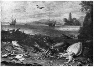 Inktvissen, zeehond, pinguins en vissen op het strand; aan de overkant van het water een stadje