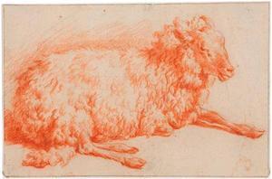 Studie van een liggend schaap