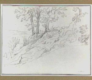 Heuvellandschap met bomen in de omgeving van Albano