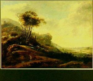Uitgestrekt berglandschap met een jager en twee honden