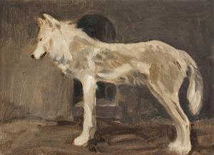 Staande witte wolf