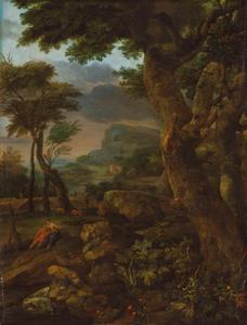 Bergachtig boslandschap