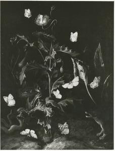 Slaapbol met vogelnest, slang, vlinders en een wezel