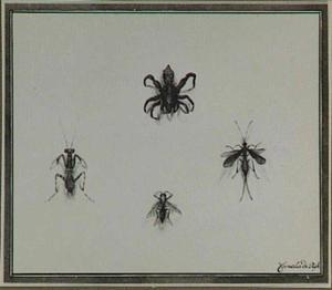 Vier insecten