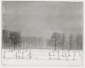 Velden en bomen in de sneeuw bij Rhijnauwen