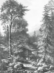 Berglandschap met bos en huis