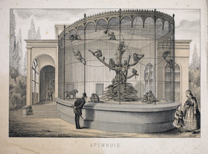Apenhuis