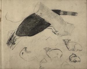 Schetsboekblad met schetsen van roofvogel een kalfje