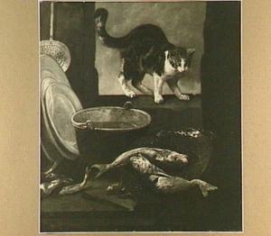 Kat in een venster bij een vergiet met vissen
