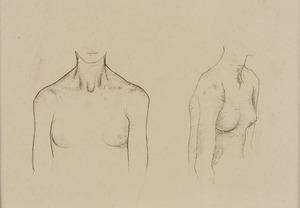 Studie torso, vrouw