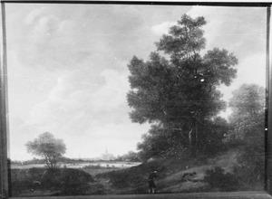 Bebost landschap met Haarlem aan de horizon