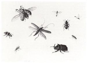 Negen uitheemse insecten