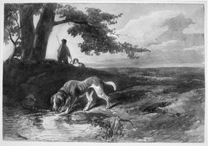 Herder met honden op de heide