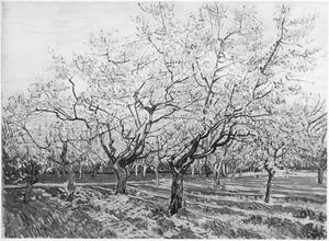 De witte boomgaard