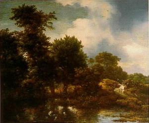 Boslandschap met eenden in een waterpoel