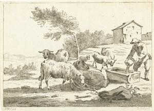 Schaapherder met zijn kudde
