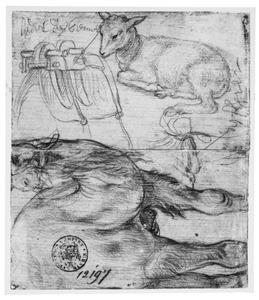 Studie van een lam, zadel en dromedaris