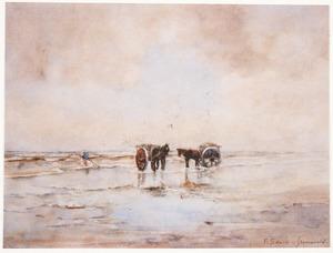 Schelpenvisser aan het strand