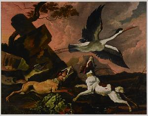 Een ooievaar opgejaagd door drie jachthonden