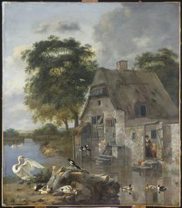 Zwanen, eenden en ander gevogelte aan de oever van een beek bij een huis