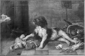 Twee honden naar elkaar dreigend in een keuken