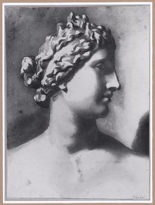 Buste van de Medici Venus