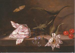 Tulp, vergeet-mij-nietje en anemoon met insecten en kersen op en stenen plint