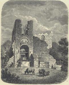Ruïne van kasteel Brederode vanuit het oosten