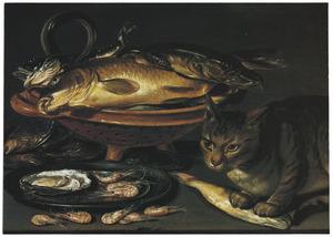 Visstilleven met kat