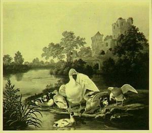Eenden in een rivierlandschap met kasteelruïne