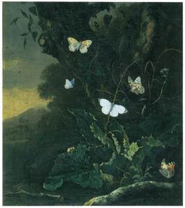 Bosstilleven met vlinders