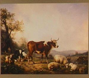 Landschap met vee op de weide