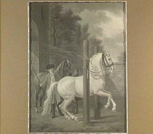 Dillenburgs paard