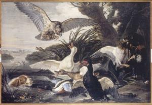 Watervogels, aangevallen door honden en een buizerd