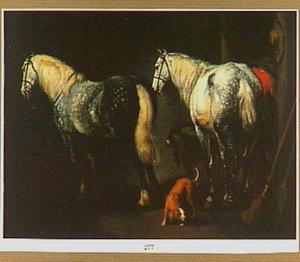 Twee appelschimmels, een hond en een geit in een stal