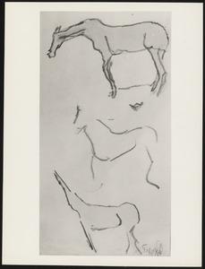 Paard (3x)