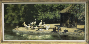 Pelikanen en andere vogels in Artis