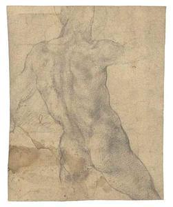 Mannelijk naakt opde rug gezien