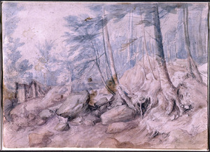 Boslandschap met rotsen en een beek