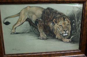 Sluipende leeuw in landschap